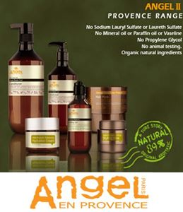 Picture for category Angel En Provence
